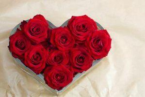 Homemade Décorations d'anniversaire romantique