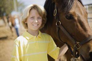 Comment devenir certifié pour enseigner thérapeutique Équitation