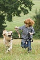 Comment le fait d'avoir un chien affecter les enfants?