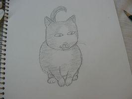 Comment Dessiner Un Chat Facile Johnserdarcom