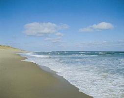 Comment Trouver des activités gratuites pour les enfants sur Cape Cod