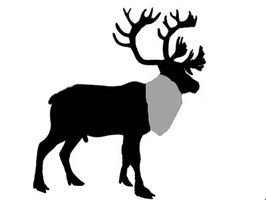 Comment suivre le Nord de l'Alaska Caribou