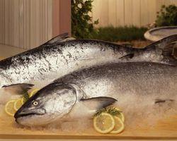 Saisons & Types de pêche proches de Sequim, Washington