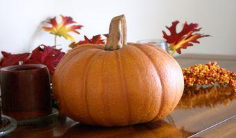 Idées de décoration pour un déjeuner d'automne