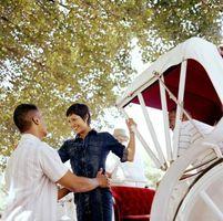 Comment avoir un mariage à thème Cendrillon à Canton, Michigan