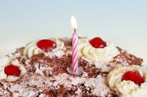 Littlest Pet Shop Gâteau d'anniversaire Idées