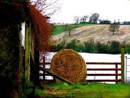 Comment tracer histoire de famille en Irlande