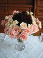 Comment envoyer Mêmes Roses Jour