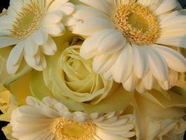 Comment faire de la soie bouquets de mariée avec gerberas