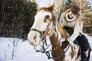 Raisons à jour un Horse Rider