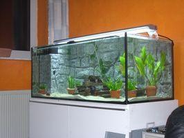 Comment Plumb un filtre à cartouche à un Aquarium
