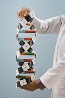 Cadeaux modernes ADN retraite