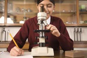 Trois classes de microscopes
