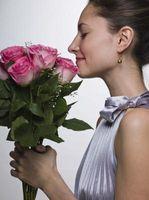 La plupart Combinaison romantique des fleurs
