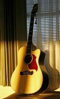 Comment faire un Guitar Case Foam