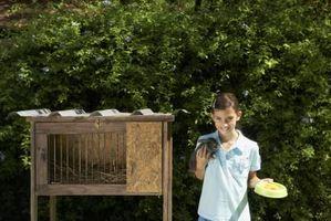 Comment construire un clapier avec une boîte d'élevage