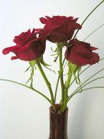 Bouquet de mariage Roses équatoriens bricolage