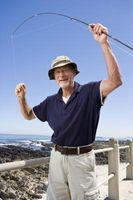 Comment à patauger poisson De la Rive-