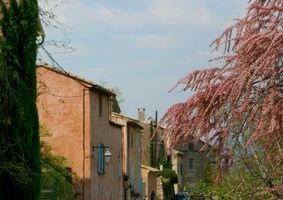 Idées pièce maîtresse pour un thème Provence