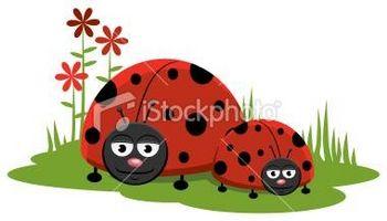 Ladybug Idées de cadeaux de douche