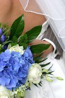 Fleurs d'hiver de mariage: Hortensias