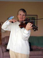 Comment faire pour démarrer à jouer du violon à 50